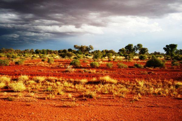 2008 Australia-16