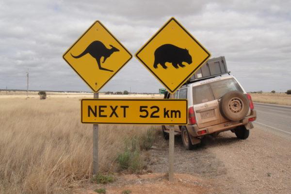 2010 Australia-9