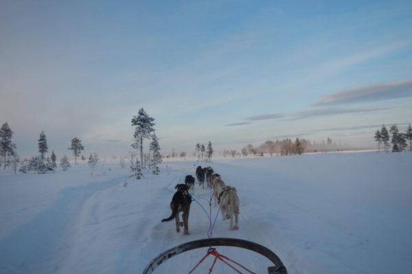 2014 Laponia zimą-11